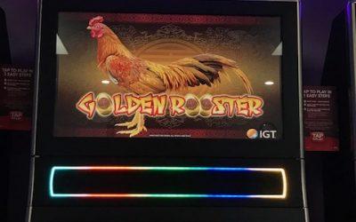 CBG Golden Rooster IGT Oct18